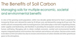 The benefits of soil carbon